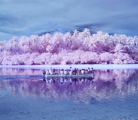 بهذه الجزيرة الوردية اللون سر..هل يمكنك اكتشافه؟