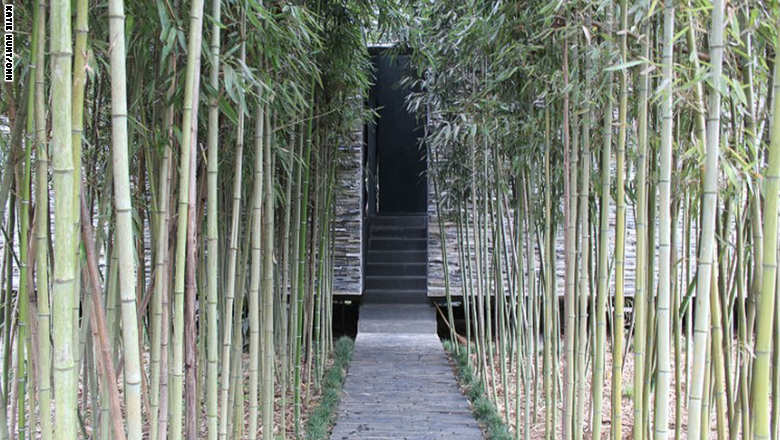 عجائب الهندسة المعمارية..في غابة نائية