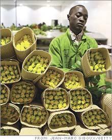 uganda.03.jpg
