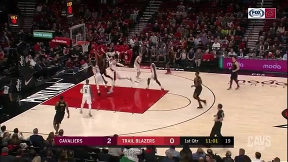 Young Bull Attacks the Basket