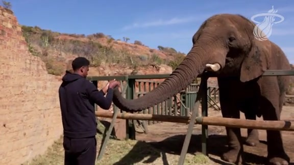 Whiteside Visits Elephant Sanctuary