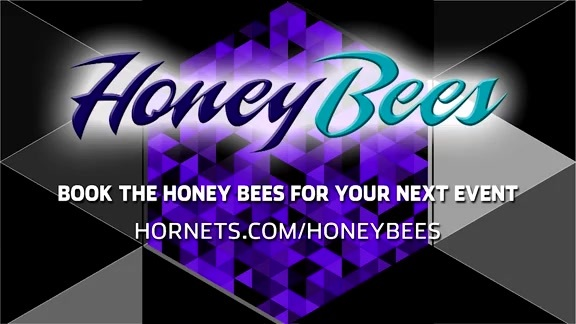 Honey Bees Performance - 11/3/18
