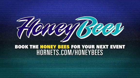 Honey Bees Performance - 11/17/18