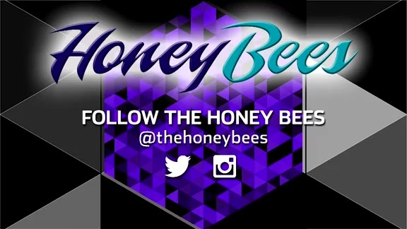 Honey Bees Performance - 11/19/18