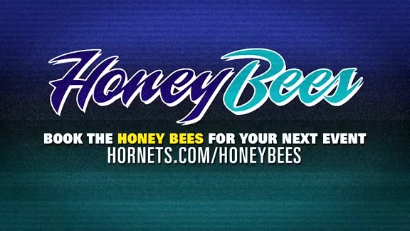 Honey Bees Performance - 3/8/19